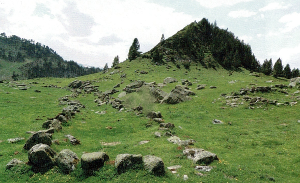 Òrri de Tredòs - Alt 1955m - alignement en couloir (75m)- Restes d'habitat sous un climat tropical (1)