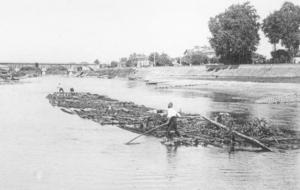 Radelage du bois sur l'Adour à Dax