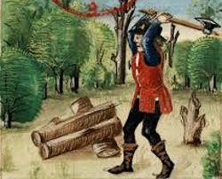La surexploitation du bois au moyen-âge