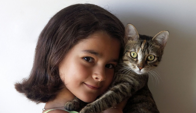 La petie fille dont le chat meurt à Noël