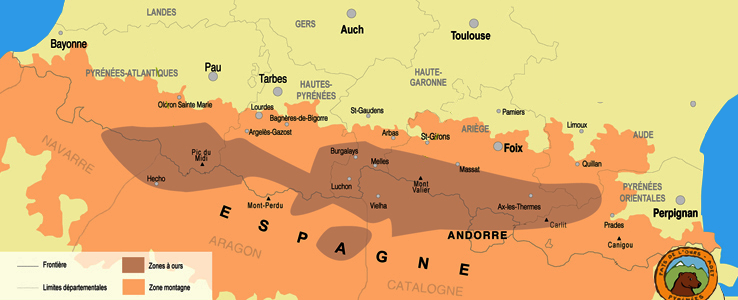 Aire de présence de l'ours dans les Pyrénées en 2018 (40 individus d'après https://www.paysdelours.com/fr)