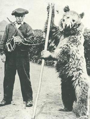 Montreur d'ours pyrénéen en Angleterre