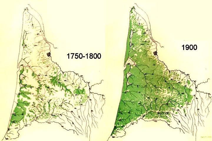 Un siècle de développement du pinhadar