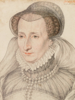 Jeanne d'Albret, la mère d'Henri III de Navarre