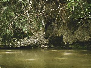 La grotte des fées de Louey sur les bords de l'Echez